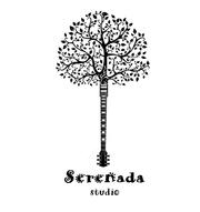 Уроки игры на гитаре Киев. Школа гитары «Serenada»
